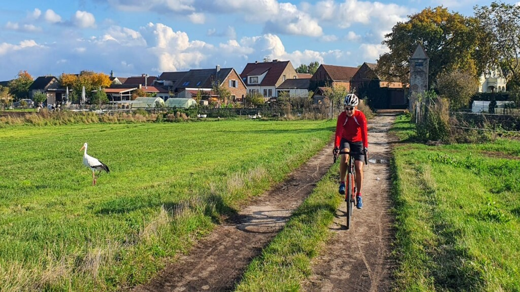 Statt oder zusätzlich zu 10.000 Schritten darf es auch gerne mal eine Radtour sein. Nicole Steiner fährt leidenschaftlich gerne Fahrrad.