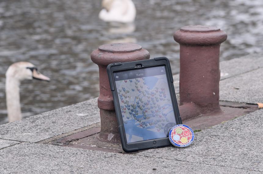 Tablet iPad Medaillon Wasser Schwan