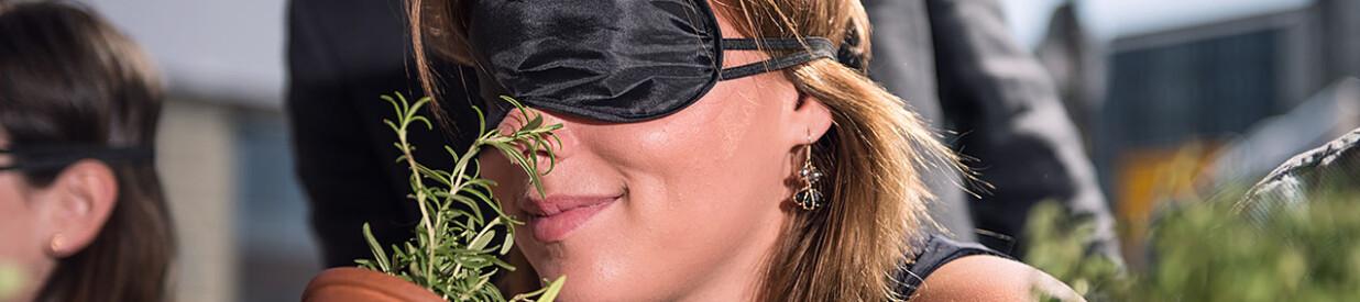Eine Frau mit verbundenen Augen riecht an einem Topf mit Rosmarin